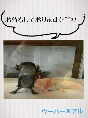 岩永0324 (3).jpg