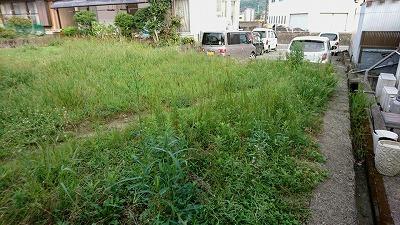 若田1002 (1).jpg